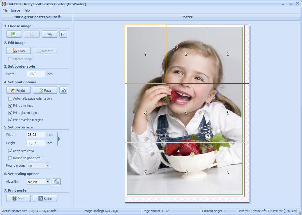 Внешний вид программы RonyaSoft Poster Printer (ProPoster) 3.01.32.